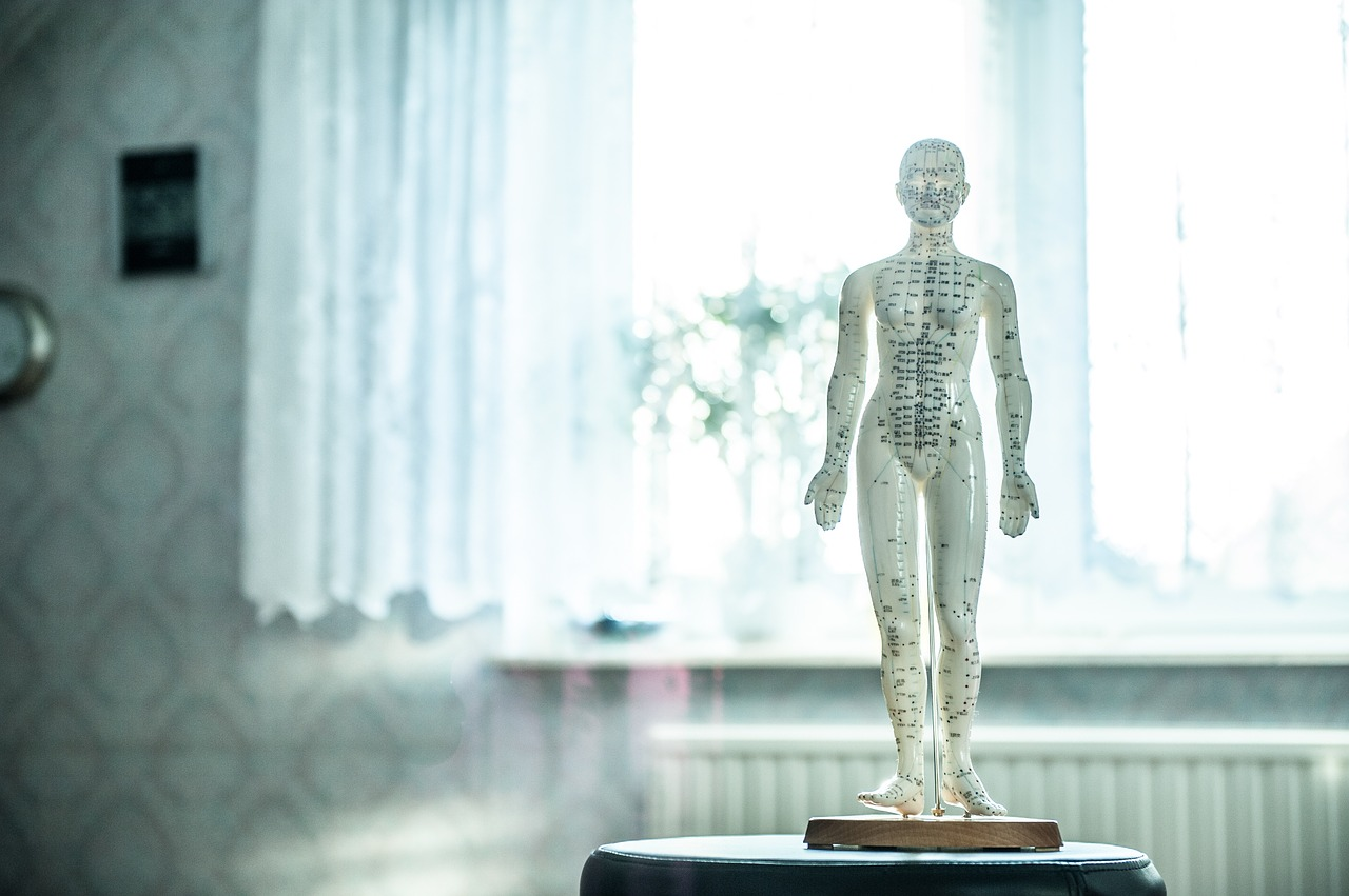 osteopathy-1207800_1280
