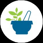 naturopathy icon